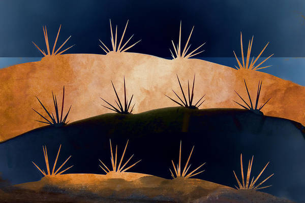 Mexico Photograph - Baja Landscape Number 1 by Carol Leigh