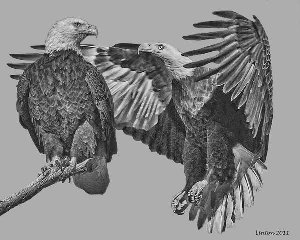 Digital Art - Bald Eagle Pair 2 by Larry Linton