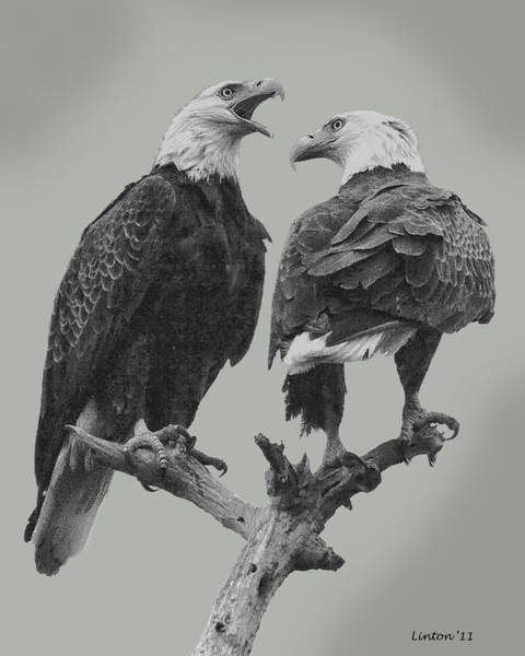 Digital Art - Bald Eagle Pair 4 by Larry Linton