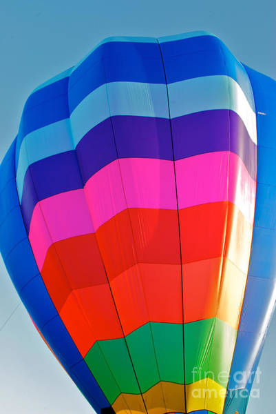 Photograph - Balloon Up by Mark Dodd