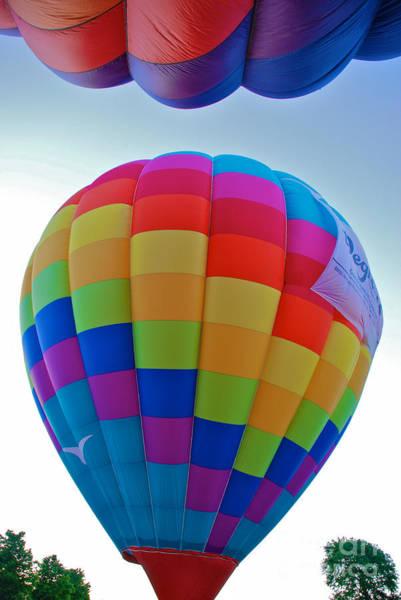 Photograph - Balloons by Mark Dodd