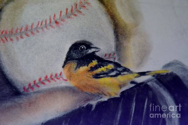 Oriole Drawing - Baltimore Orioles by AE Hansen