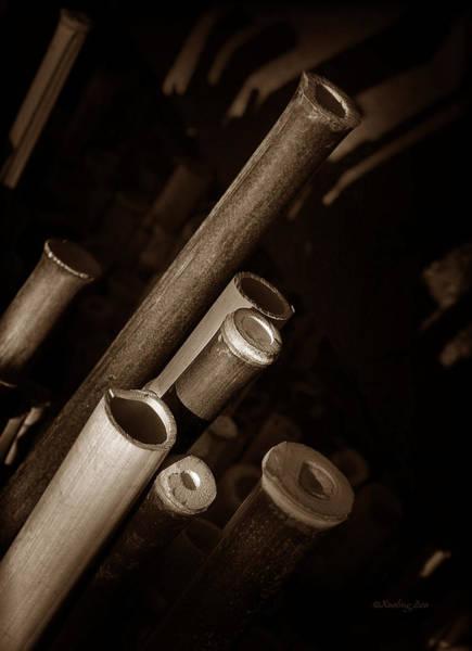 Photograph - Bamboo Poles 1 by Xueling Zou