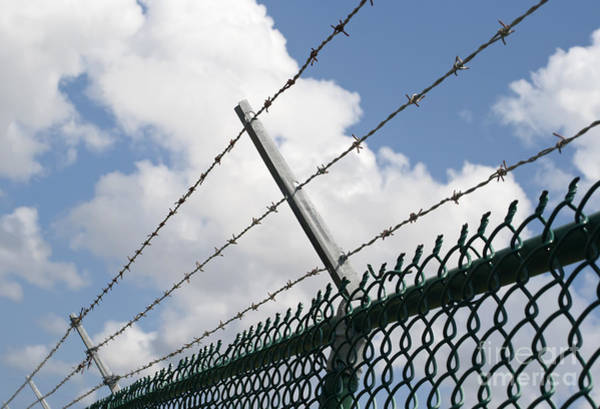 Chain Link Photograph - Barbed Wire by Blink Images