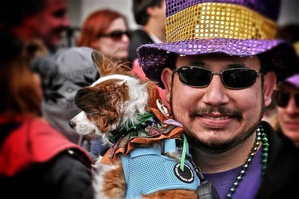 Photograph - Barkus Mardi Gras Parade by Jim Albritton