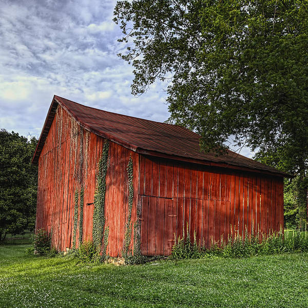 Wall Art - Photograph - Barn At Avenel Plantation - Bedford Va by Steve Hurt