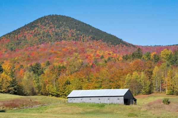 Photograph - Barn Autumn by Larry Landolfi