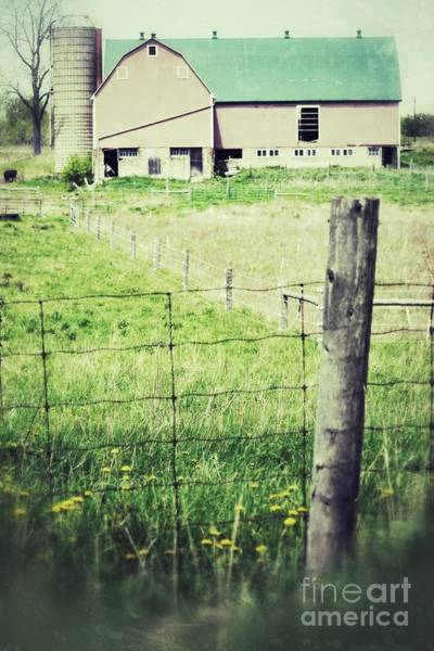 Photograph - Barn None by Traci Cottingham