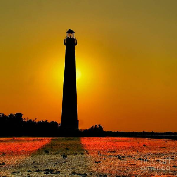 Photograph - Barnegat Light Aglow by Nick Zelinsky