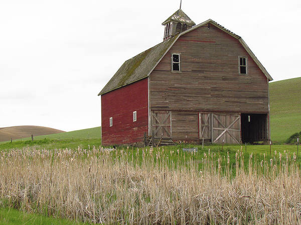 Photograph - Barns Of The Palouse 3 by Tony and Kristi Middleton