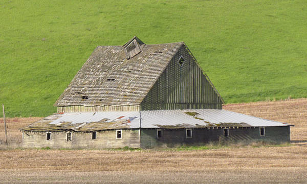 Photograph - Barns Of The Palouse 8 by Tony and Kristi Middleton