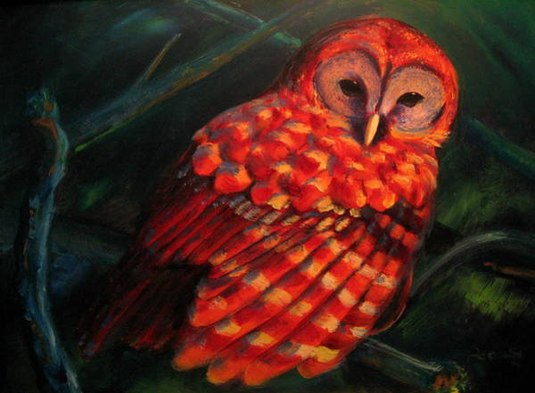 Painting - Barred Owl by Jason Reinhardt
