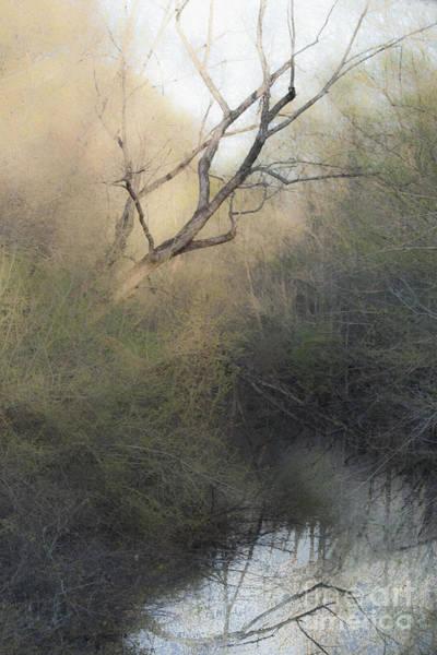 Fall Scenery Mixed Media - Barren Beauty by Kim Henderson