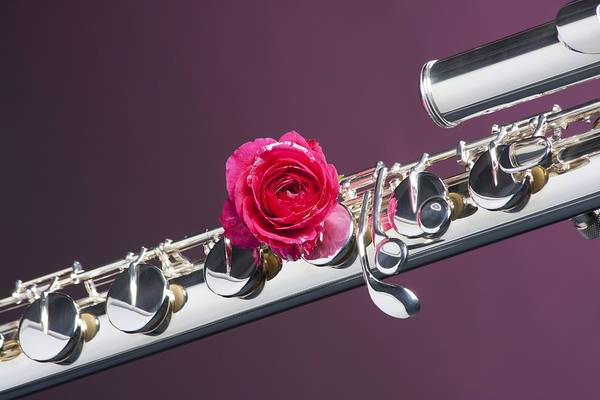 Photograph - Base Flute Red Rose by M K Miller