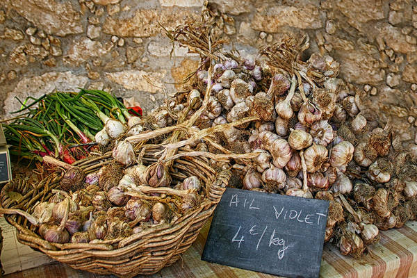 Sandra Anderson Wall Art - Photograph - Basket Of Garlic by Sandra Anderson
