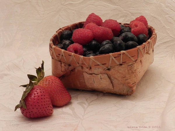 Photograph - Basket Of Goodness by Grace Dillon