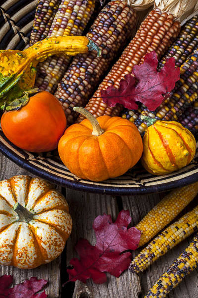 Gourd Photograph - Basketful Of Autumn by Garry Gay