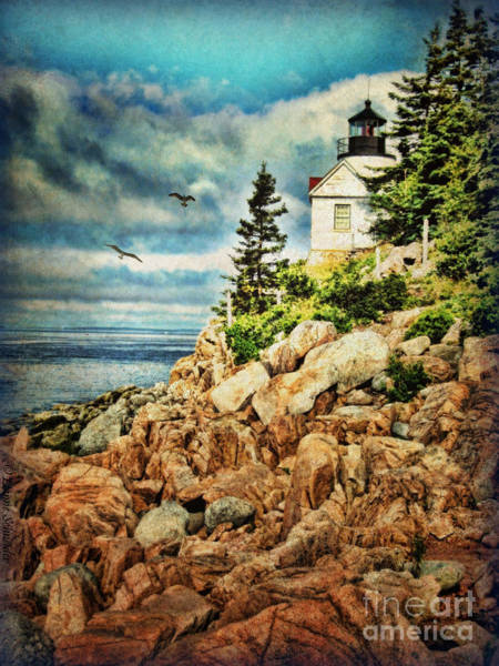Tides Digital Art - Bass Harbor - Acadia Np by Lianne Schneider