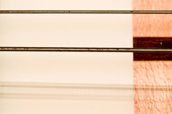 Fret Board Photograph - Bass String Vibrating by Photo Researchers