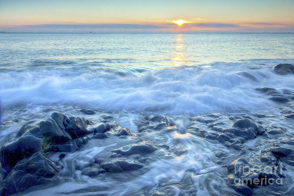 Photograph - Bathed In Blue by Susan Cole Kelly