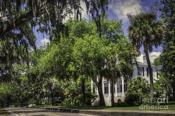 Photograph - Bay Street Beaufort Sc II by David Waldrop