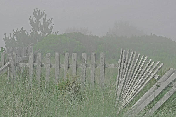 Photograph - Beach Fog by Tom Singleton