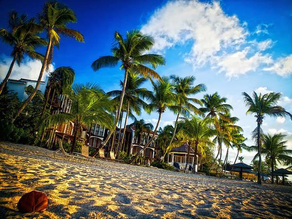 Photograph - Beach Rendezvous by Daniel Marcion