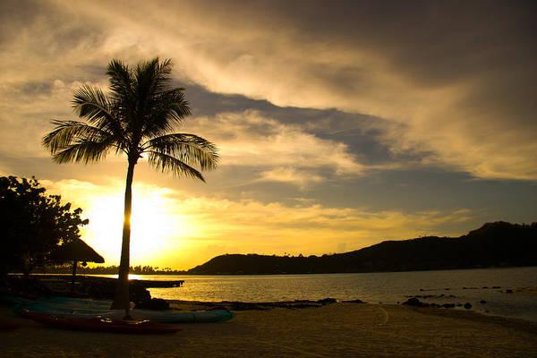 Beach Sunset With Bora Bora Palm Art Print by Benjamin Clark