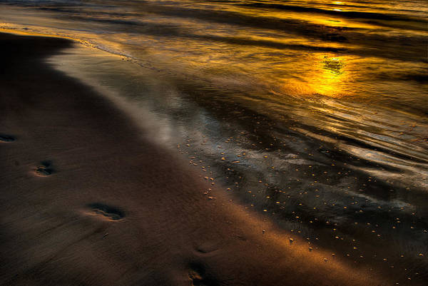 Photograph - Beach Walk - Part 1 by Dennis Dame
