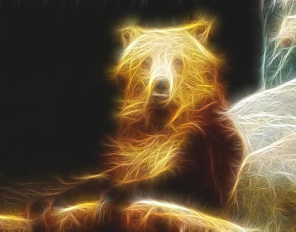 Photograph - Bear Fractalius by Maggy Marsh