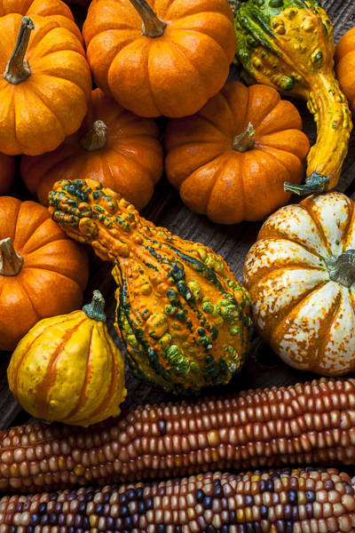 Gourd Photograph - Beautiful Autumn by Garry Gay