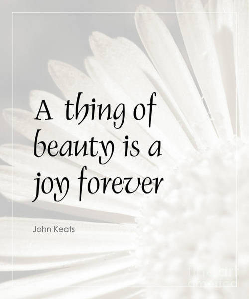 Inspirational Photograph - A Thing Of Beauty Quote by Kate McKenna