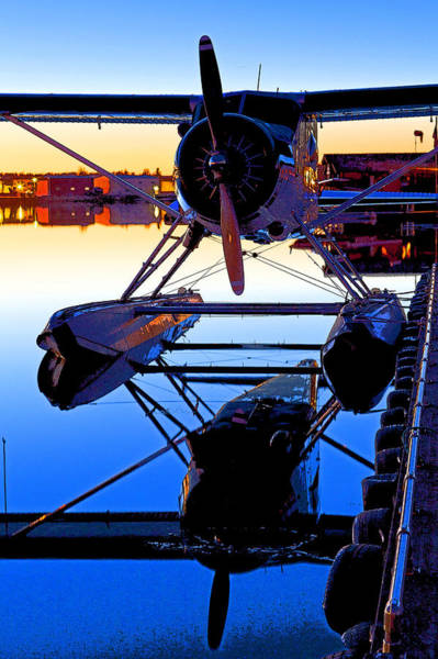 Radial Engine Photograph - Beaver At Twilight- Abstract by Tim Grams