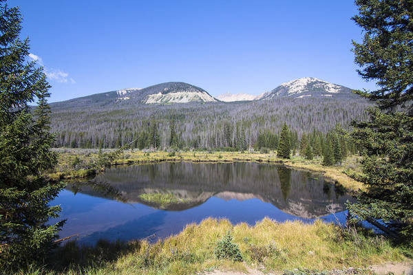 Wall Art - Photograph - Beaver Pond At Rocky Mountain National Park by Ellie Teramoto