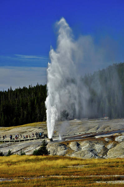 Art Print featuring the photograph Beehive Geyser by Greg Norrell