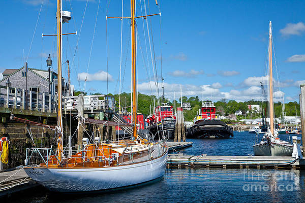 Photograph - Belfast Harbor by Susan Cole Kelly