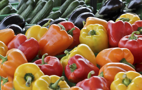 Photograph - Bell Peppers Capsicum by Nick Mares