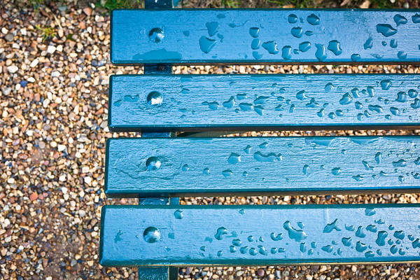 Glossy Photograph - Bench After Rain by Tom Gowanlock