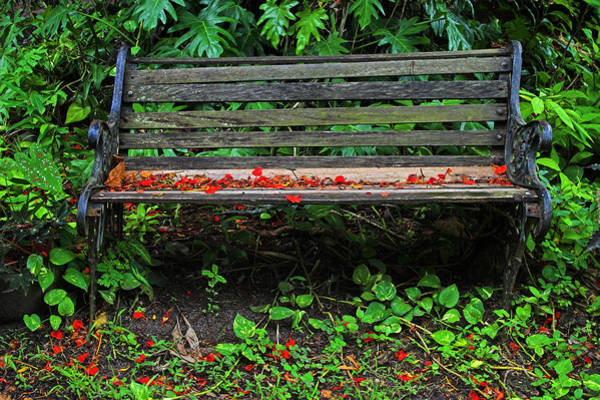 Wall Art - Photograph - Bench And Flowers- St Lucia. by Chester Williams