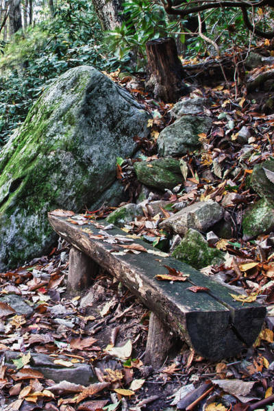 Photograph - Bench Beside The Trail To Cascade Falls by James Woody