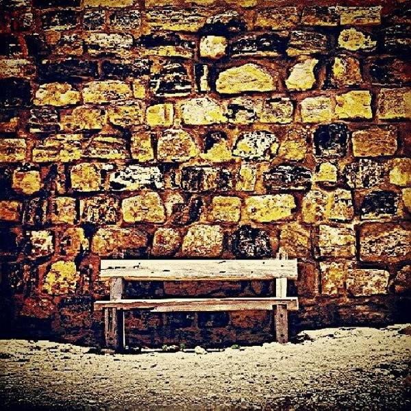 Romantic Wall Art - Photograph - Bench by Ernesto Cinquepalmi
