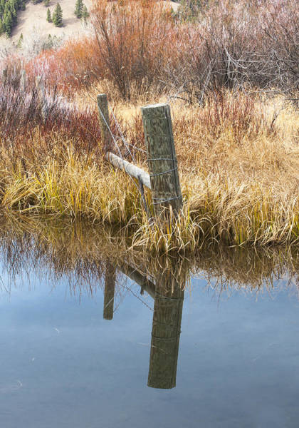 Photograph - Between The Fence Posts by Fran Riley