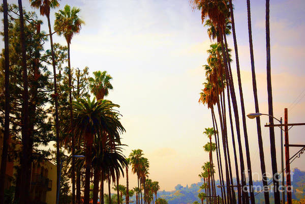 Photograph - Beverly Hills In La by Susanne Van Hulst