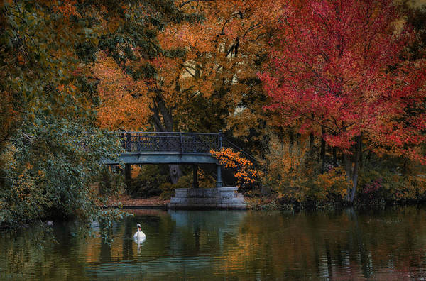 Photograph - Beyond The Bridge by Robin-Lee Vieira