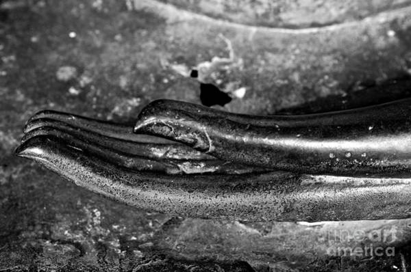 Buddah Photograph - Bhumisparsa Mudra I In Black And White by Dean Harte