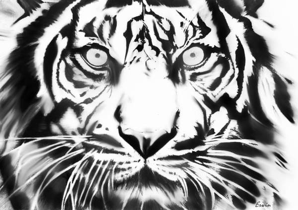 Sumatran Drawing - Big Cat by Erwin Verhoeven