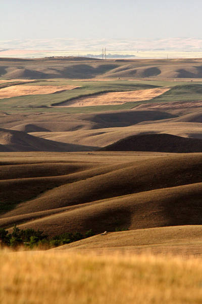 Prairie View Digital Art - Big Muddy Valley Of Saskatchewan by Mark Duffy