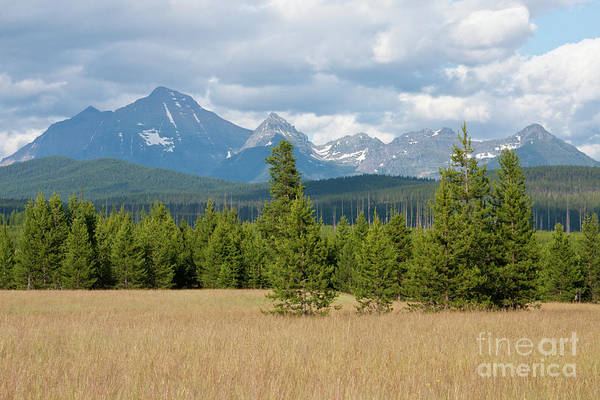 Photograph - Big Prairie - Livingston Mountains by Katie LaSalle-Lowery