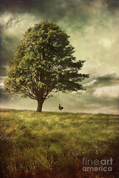 Photograph - Big Tree With Young Boy On Tire Swing by Sandra Cunningham