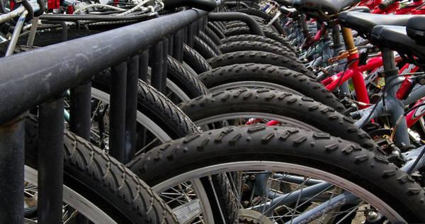 Bicycle Rack Photograph - Bike Rental by Murray Bloom